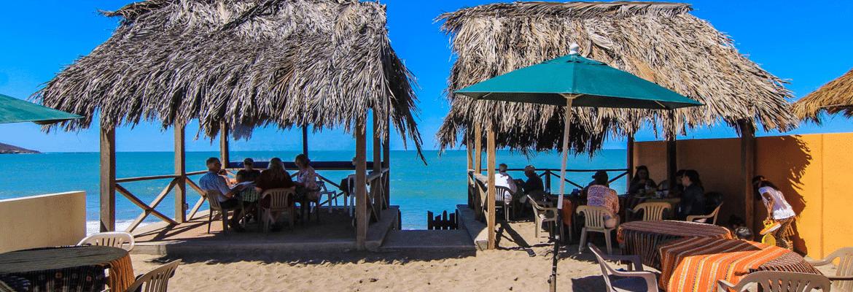 Surf's Up Café